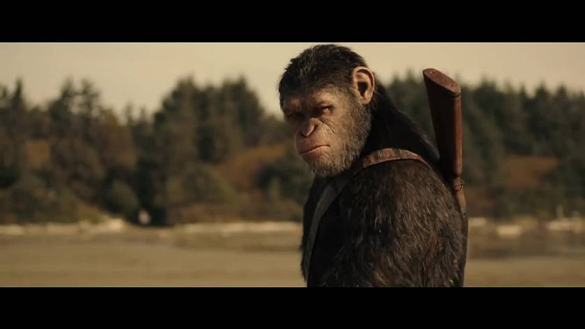 prave-v-kinech-valka-o-planetu-opic