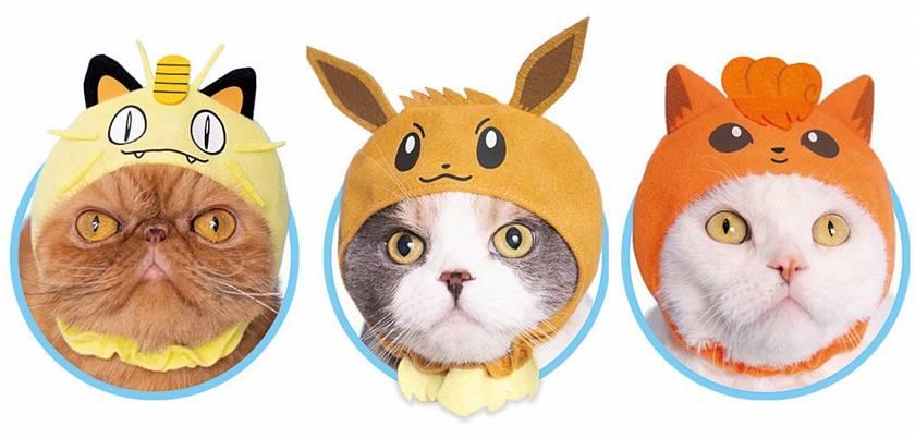 nejlepsi-vec-kterou-na-internetu-dnes-uvidite-pokemon-cepicky-pro-kocky